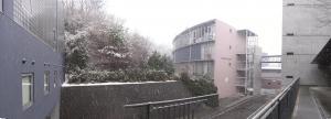 キャンパス雪景色<2>