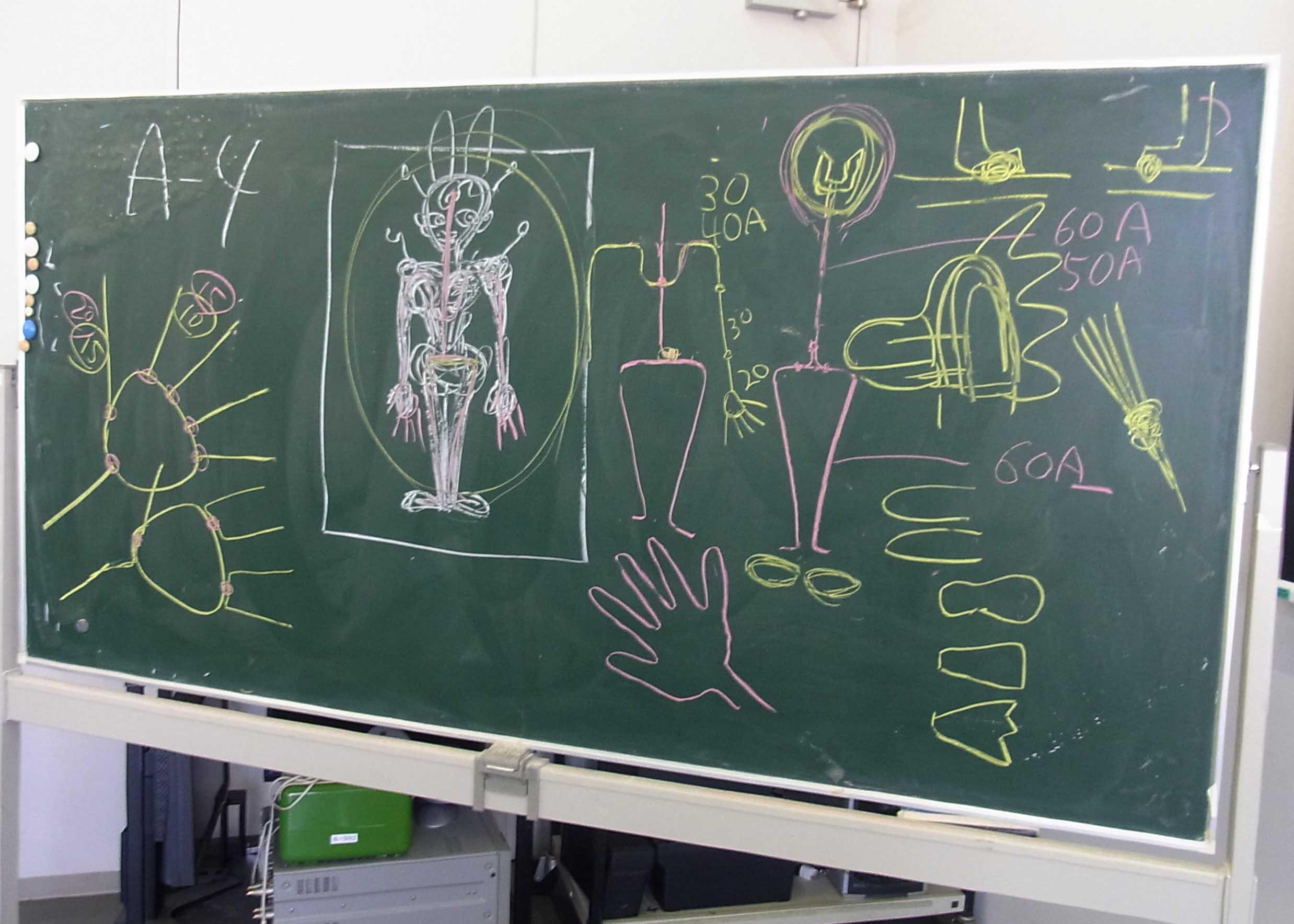 骨の基本的な構造